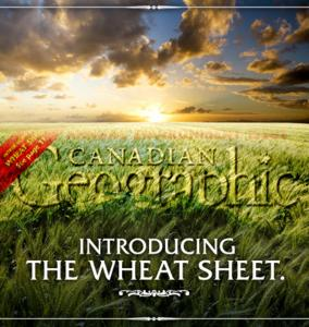 wheatsheet can geo